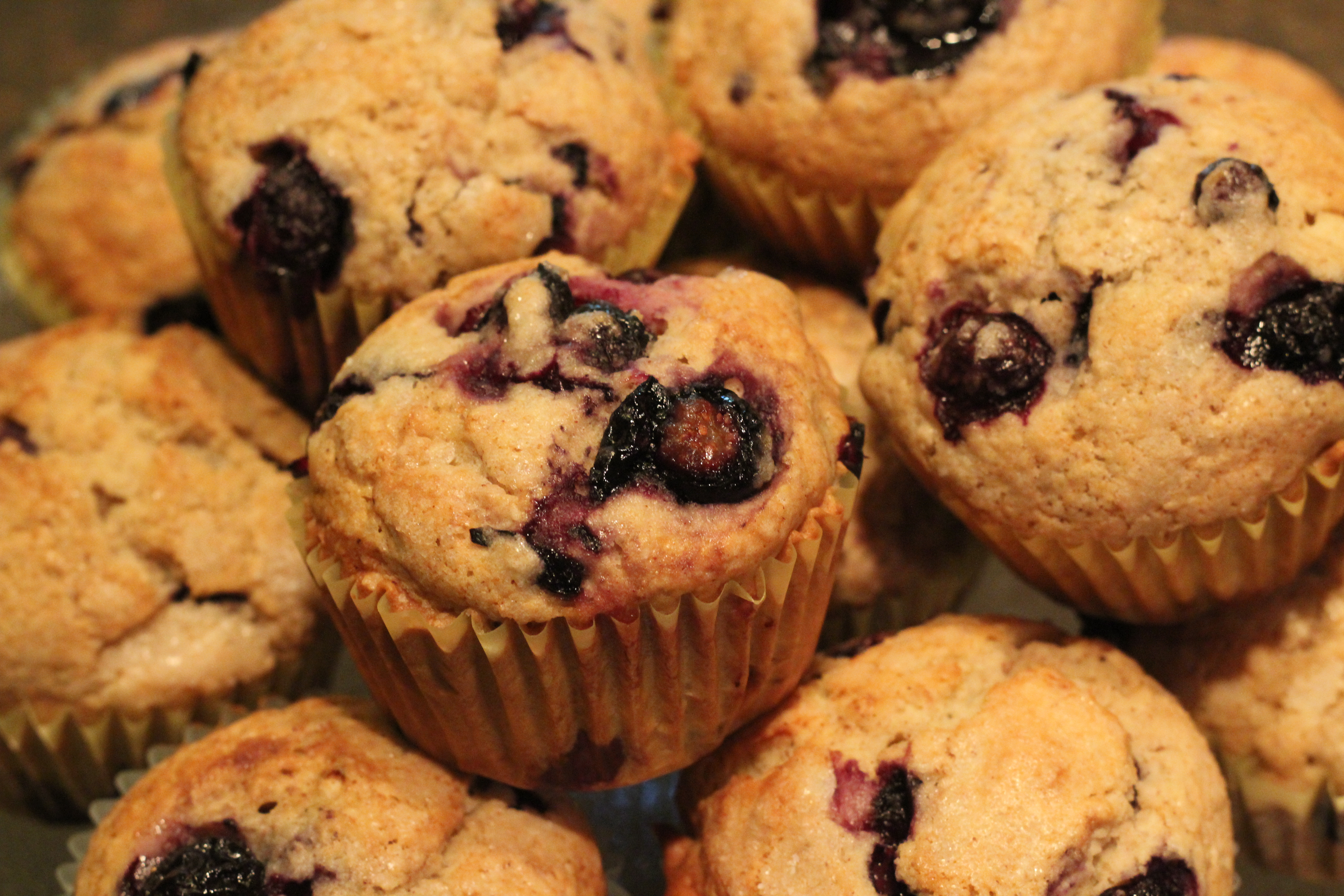 all american blueberry muffins • live big love deep