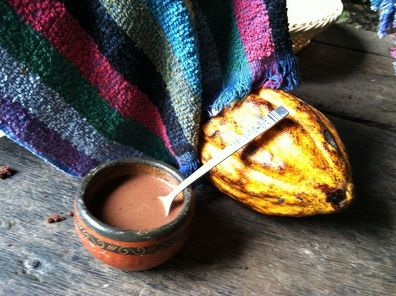cocoa-fruit-to-hot-chocolate-photo_12737570-fit468x296