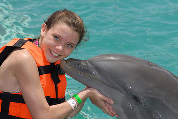 grand-cayman-dolphin-encounter-in-george-town-43420