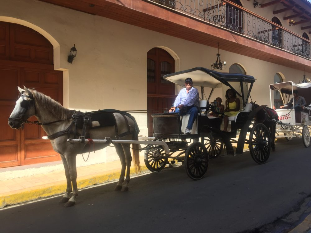 VaPues Tours horse-drawn carriage